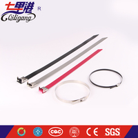 Good price Outdoor stainless steel cable ties