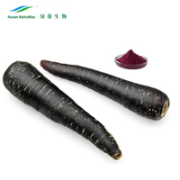GMP Black Carrot Extract Powder/Black Carrot Juice Concentrate Carotenoids 1%~99% Beta Carotene