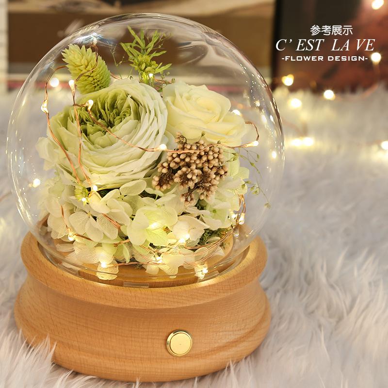 Abóbada conduzida do Cloche do vidro da flor da beleza da luz da corda conduzida com controlo a distância