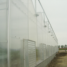 Commercial polycarbonate garden greenhouse for orchid
