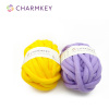 Super Core Hand Knitting yarn crochet for Pet Bed