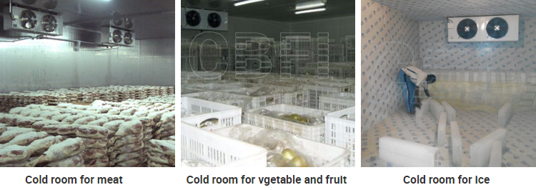 CBFI clean coldrooms for sale type for freezingg-2