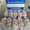 /product-detail/garlic-processing-wholesale-garlic-fresh-garlic-natural-garlic-garlic-price-1394668128.html