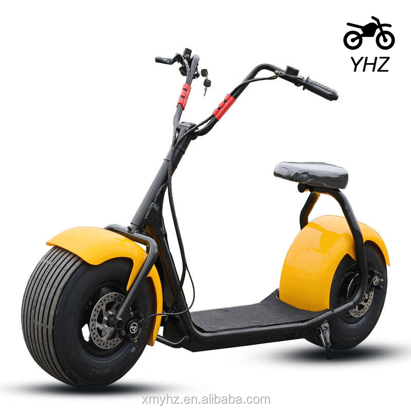 Electric Scooter Malaysia Price For Harlley Citycoco