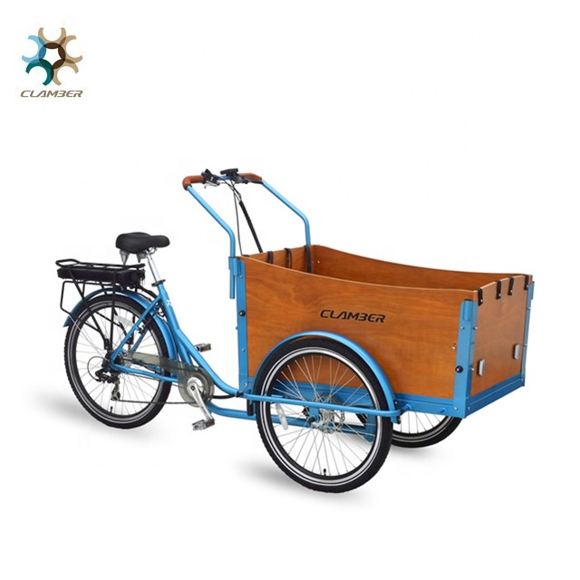 Europe CE family three wheel tricycle cargo bike china/electric cargobike for sale