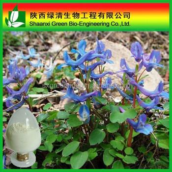 Corydalis yanhusuo tuber extract/Corydalis yanhusuo/Rotundine extarct