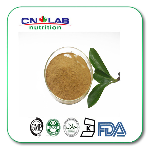 FDA,HALAL,KOSHER,ISO Certified white willow bark extract Salicin