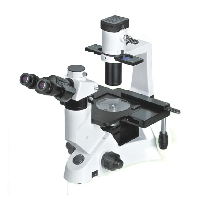 Fluorescent Microscope With CCD And Camera for sample sale