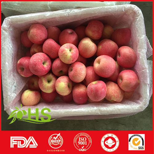 Best-selling fresh juicy crisp red gala and fuji apple fruit export to thailand from china