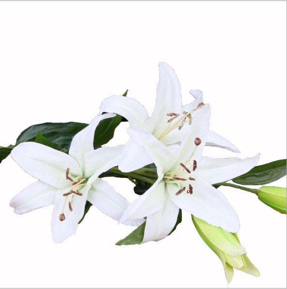 China White Flower Bridal Wholesale Alibaba