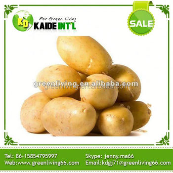 New crop bulk potato wholesale buy new crop bulk potato for Greenliving com