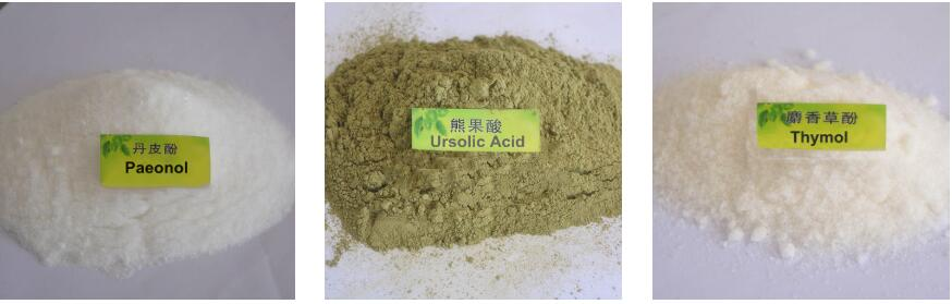 plant extract Thymol CAS NO. 89-83-8, 89-83-8 98% thymol powder manufacturer animal feed aromatherapy