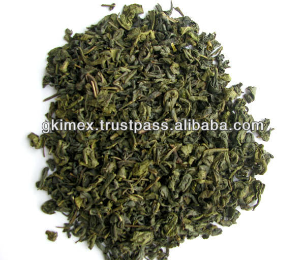 Green Tea - Hot selling to Morocco with high quality