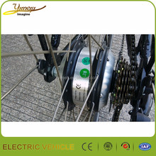 CE 30-50km/h wide varieties mountain ebike with popular