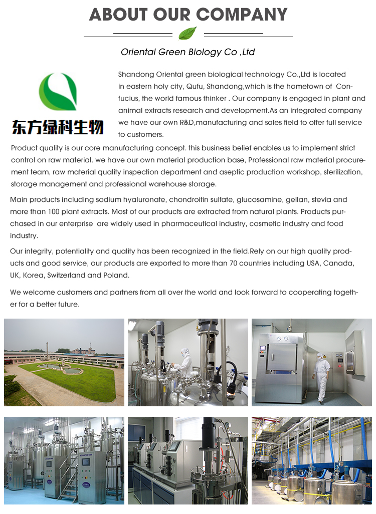 Sodium Hyaluronate(Food Grade, Cosmetic Grade, Pharmaceutical Grade)