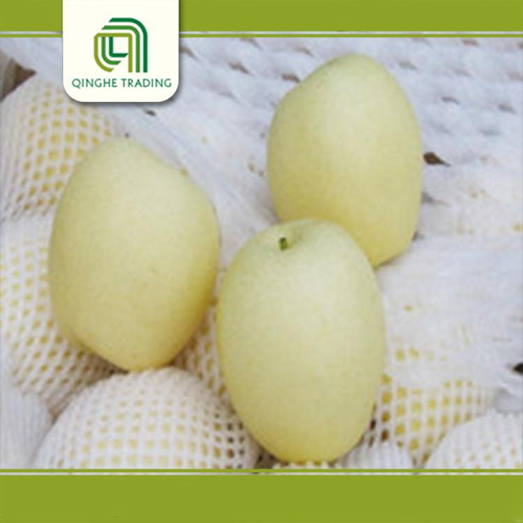 cheap fresh pear 2011 with low price