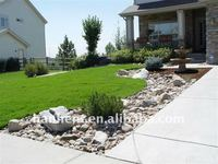 Synthetic landscaping lawn around house