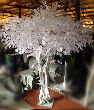 Wholesale Decorative Ficus Tree White Leaves Banyan Tree For ...