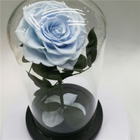 2019 Beauty and the Beast Decorative Flower Rose Eternal Preserved Decorative Rose Flower In Glass Dome For Gift