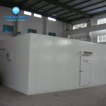 cold storage room for vegetable and fruit with top brand refrigeration unit