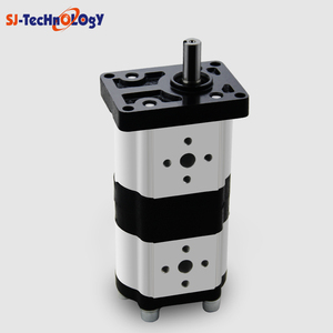 2CBN*3 Double Hydraulic small gear pump tailored for every industry