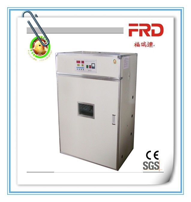 FRD-880 White Top Quality Fertile goose hatching eggs for sale/egg incubator machine
