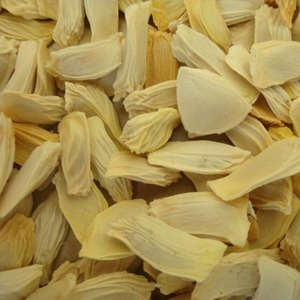 Many kind of fruit tree seeds