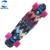 Rainbow Colour Complete Mini Cruiser Fish Board Skateboard for Adult Kid