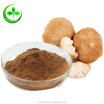 100% Natural Lion's Mane Mushroom Extract Powder 30% Polysaccharides