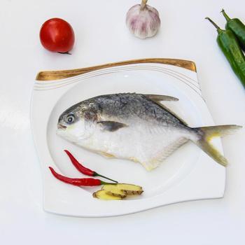 Segar Beku Emas Ikan Bawal Putih Ikan Bawal Buy Ikan Bawal Emas Ikan Bawal Ikan Bawal Ikan Product On Alibaba Com