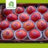 cheap fresh fruits apples fresh fuji apples with low price