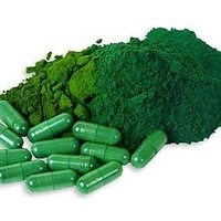 ISO / Kosher / Halal certificated wholesale food grade plant extract tablet organic spirulina powder