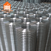 Direct Supply 1/4 Inch Galvanized Welded Wire Mesh Rolls