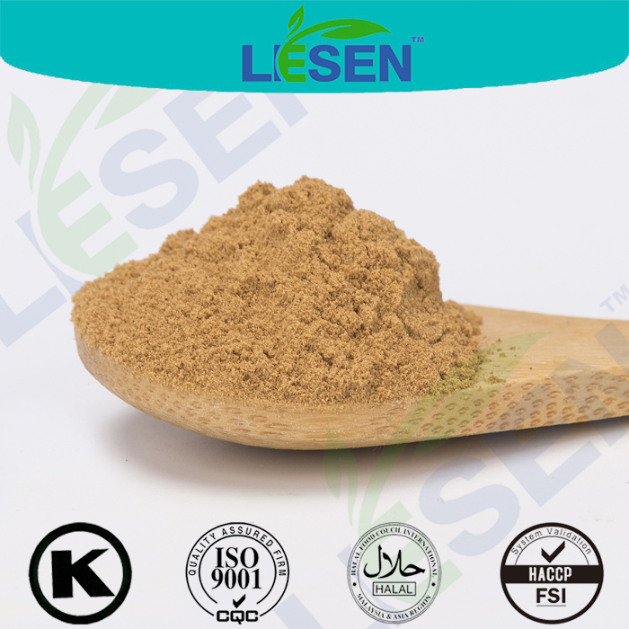 Pure Natural White lentils extract powder