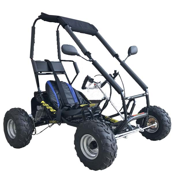 Own factory produced high quality G-50A-4 Beach Buggy