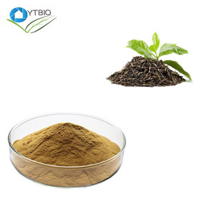100% Pure Green Tea Extract Theanine 20% 40%--NutraMax Supplier