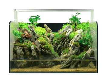 Attrayant FIREAQUA Eco Friendly Mini Garden Fish Tank Aquarium With Pump
