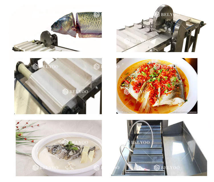 Top quality 304 stainless steel big fish killer anchovy fish head cutting machine