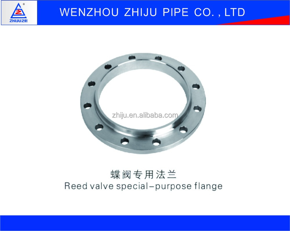 304 316 321 DN32 Stainless Steel Pipe Fittings Flange Reed Valve Special-Purpose Flange