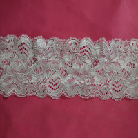 Beautiful lingerie stretch lace band