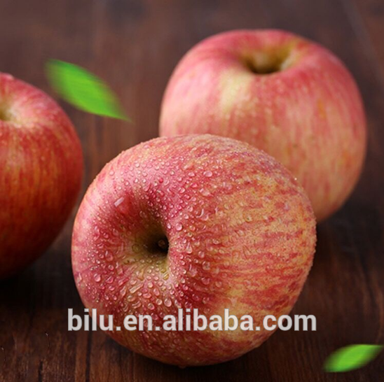 China manufacturer high quality apple exporters manufactured in China