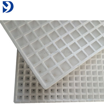 Seed Starting Plug Plant Fast Growing 10x20 Cell Polystyrene ... on
