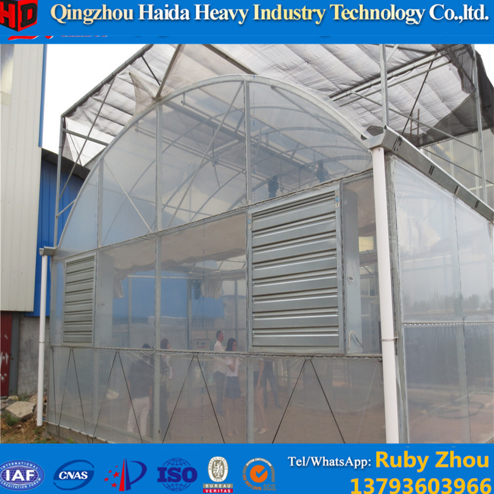 Mushroom Growing Greenhouse Mushroom Growing Greenhouse Suppliers and Manufacturers at Alibaba.com  sc 1 st  Alibaba & Mushroom Growing Greenhouse Mushroom Growing Greenhouse Suppliers ...