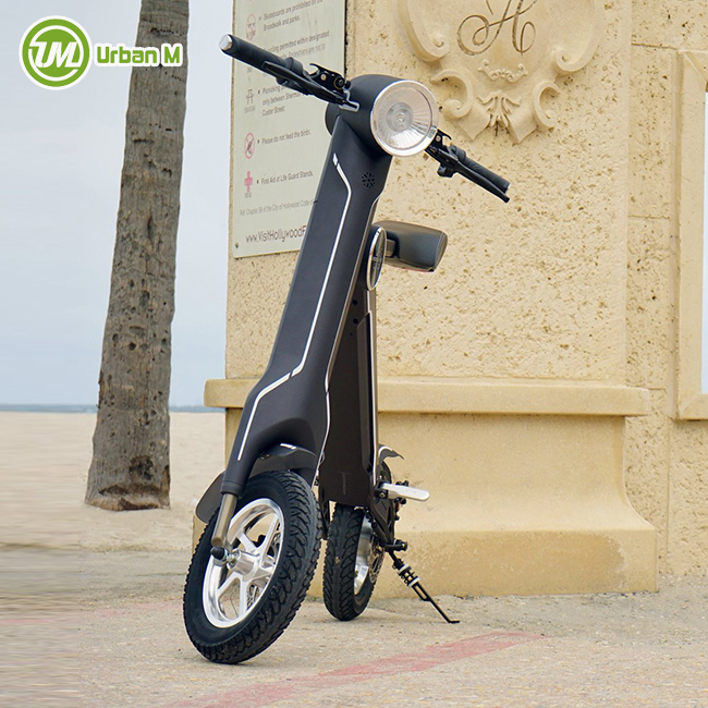 High Speed 200-250W <strong>Ce</strong> En15194 Electric Bike