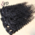Seamless Clip In Afro Human Hair Extensions Curly Remy Cheap Hair Weft for Black Women