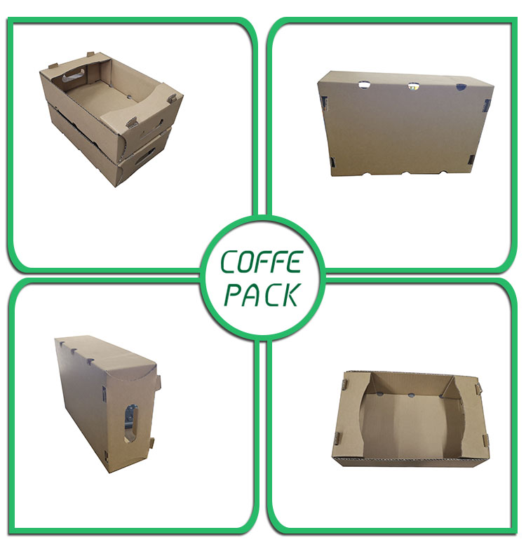 Folding Kraft Corrugated Cartons Paper Packaging Gift Boxes for Fruits