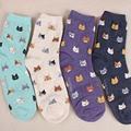 Autumn New sock Animal cartoon cat lovely for women cotton socks 5 colors