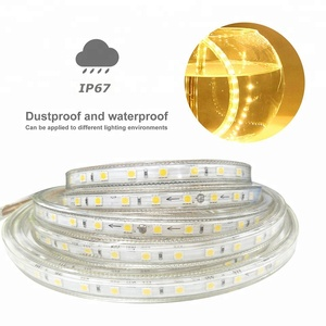 220v 110V waterproof IP65 5050 led strip led light hose 2400k 4000k 6000k modi led light with factory price