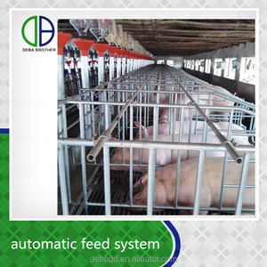 Customized Design Galvanized Adjustable Farrowing Pen For Pig Farm