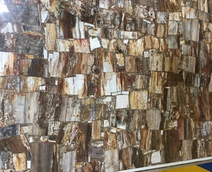 Tiles slabs petrified wood agate price countertop brown fossil stone